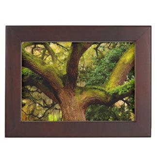 Oak tree memory box