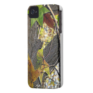 Oak Tree Woodland iPhone 4 Covers