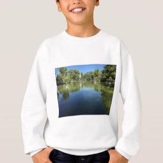 Oasis in the desert sweatshirt