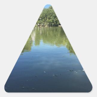 Oasis in the desert triangle sticker