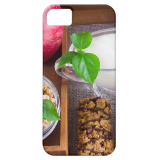 Oat cereal with nuts and raisins iPhone 5 cover