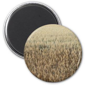 Oats Big Field Magnet