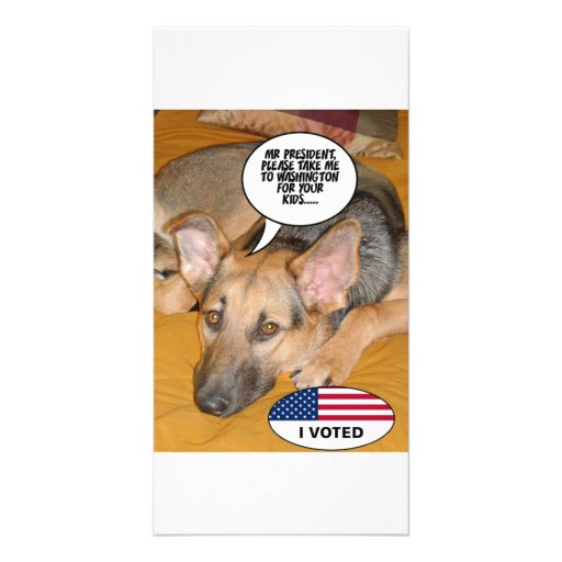 Obama Pet/Whitehouse Humor Picture Card