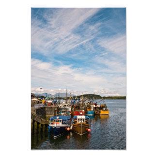 Oban Harbour Fishing Boats Photo Print