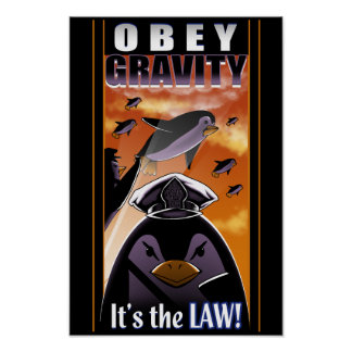 Obey Gravity Poster