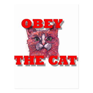 Obey the Cat Postcard