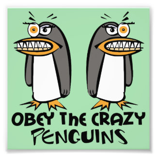 Obey the crazy Penguins Graphic Design Photo Print