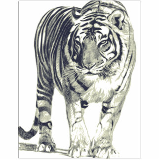 Object 3D Tiger Tiger Photo Sculpture Magnet