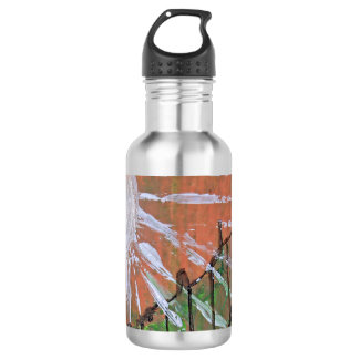 Obscure Orange 532 Ml Water Bottle