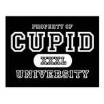 Obscurité d'université de cupidon cartes postales