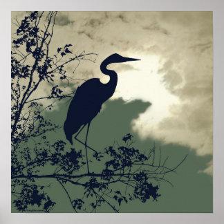 Observation d'oiseaux bleue de coucher du soleil poster