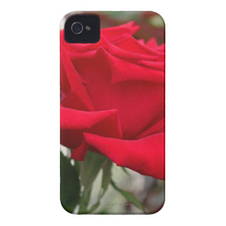 Obsession iPhone 4 Case