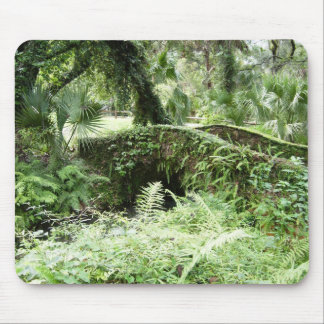 Ocala Florida Forest Footbridge mousepad photo art