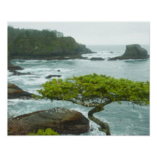 Ocean and rocky shore of remote area poster