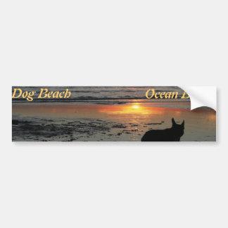 Ocean Beach, dog beach bumper sticker Car Bumper Sticker