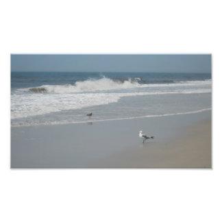 Ocean Beach Scene Photograph