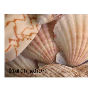 Ocean City, Maryland Postcard