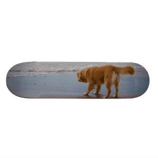 Océan de tintement de chien d'arrêt de canard de l skateboards personnalisés