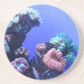 ocean_one coaster