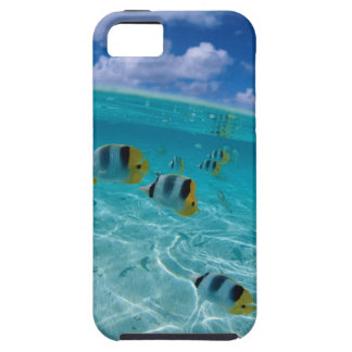 ocean pretty case for the iPhone 5