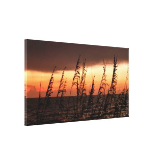 Ocean Sunset Grasses Stretched Canvas Print