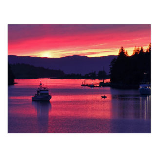 Ocean Sunset with Boats in Harbor Postcard