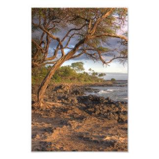 ocean view Maui,Hawaii Photo Print