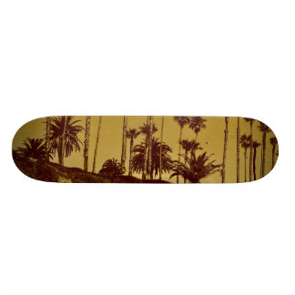 ocean view skateboard
