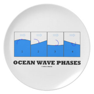 Ocean Wave Phases (Physics) Plate