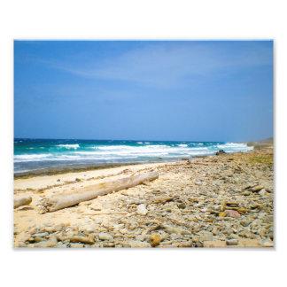 Ocean waves beach with driftwood, Caribbean decor Photo Print