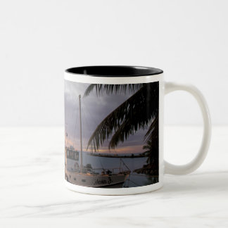Oceania, Polynesia, Cook Islands, Aitutaki, Two-Tone Coffee Mug