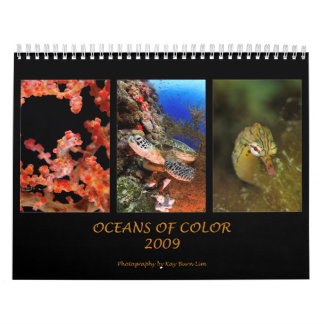 Oceans Of Color Calendars