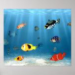 Oceans Of Fish Poster