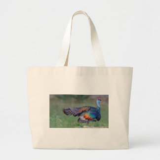Ocellated Turkey in Guatemala Large Tote Bag