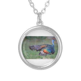 Ocellated Turkey in Guatemala Silver Plated Necklace