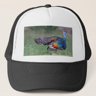 Ocellated Turkey in Guatemala Trucker Hat