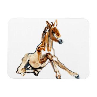 Ochre Foal Rectangular Photo Magnet