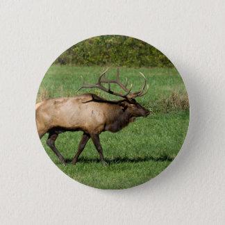 Oconaluftee Elk 2 Inch Round Button