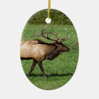 Oconaluftee Elk Ceramic Ornament