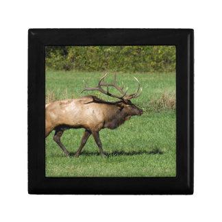 Oconaluftee Elk Gift Box