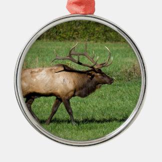 Oconaluftee Elk Metal Ornament