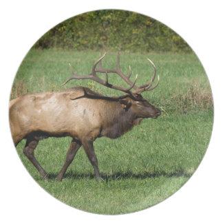 Oconaluftee Elk Plate