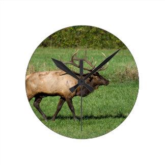 Oconaluftee Elk Round Clock