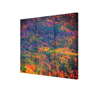 October Colors Triptych Canvas Print