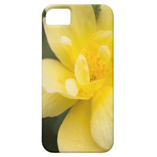October Rose iPhone 5 Case