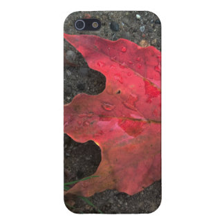 October Sunrise Case For iPhone 5/5S