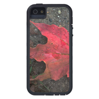 October Sunrise Case For The iPhone 5