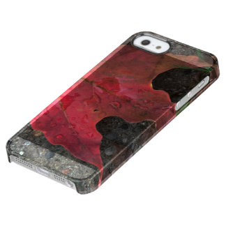 October Sunrise Clear iPhone SE/5/5s Case