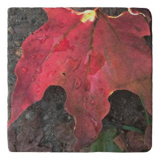 October Sunrise Trivet