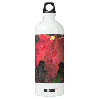 October Sunrise Water Bottle